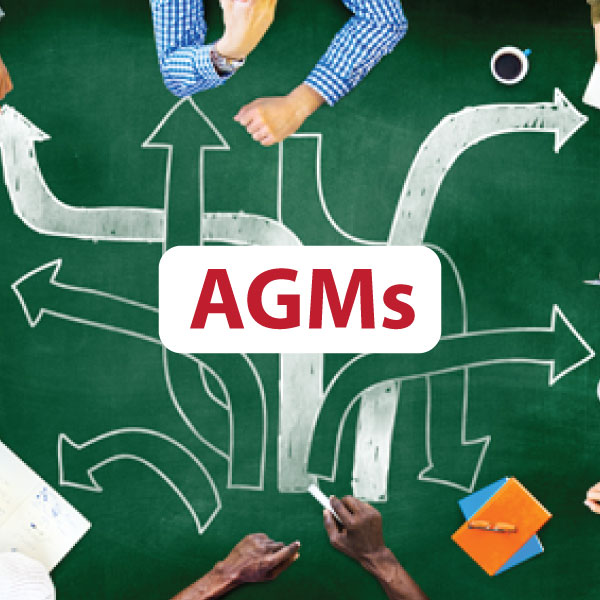 Virtual Annual General Meetings (AGMs): The New Normal